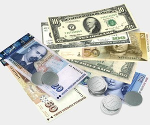 Foreign Currency Current Account