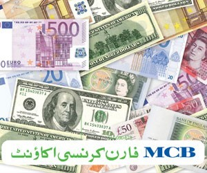 Special Foreign Currency Term Deposit
